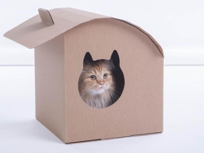 arredi per gatti